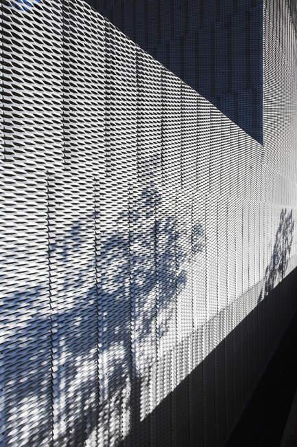 Plantas lançando sombra na parede texturizada do edifício moderno — Fotografia de Stock