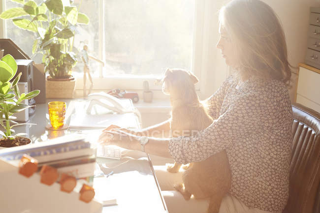 Woman with dog on lap typing on keyboard in sunny home office — Stock Photo
