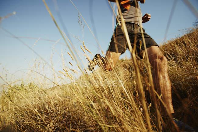 Mann läuft durch hohe Gräser auf sonnigen trail — Stockfoto