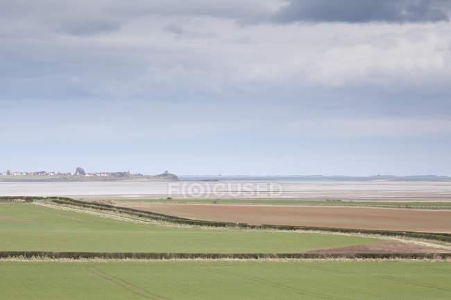 Pastagens rurais com oceano no fundo — Fotografia de Stock