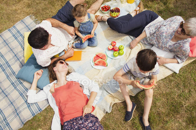 Вид сверху многодетная семья наслаждается летним пикником — стоковое фото