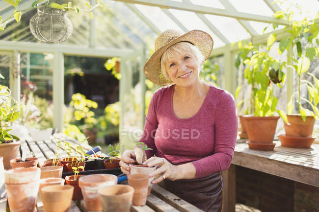 Porträt lächelnde Seniorin beim Pflanzen im Gewächshaus — Stockfoto