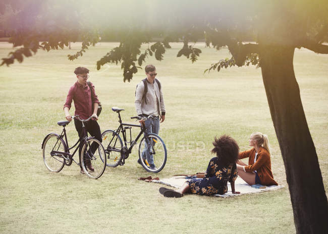 Men with bicycles approaching women on blanket in park — Stock Photo