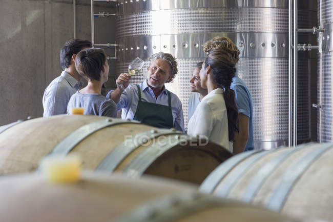 Vintner and winery employees examining wine in cellar — Stock Photo