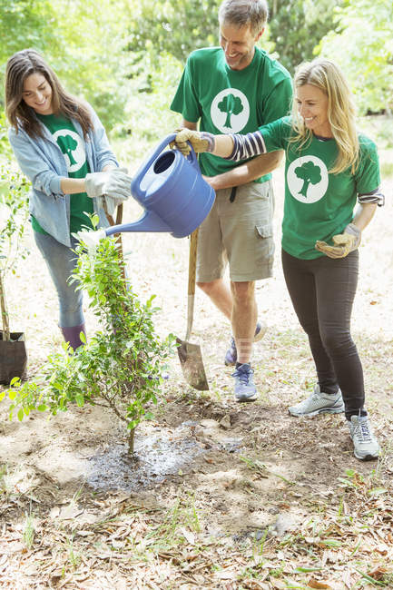 Environmentalist volunteers watering newly planted tree — Stock Photo
