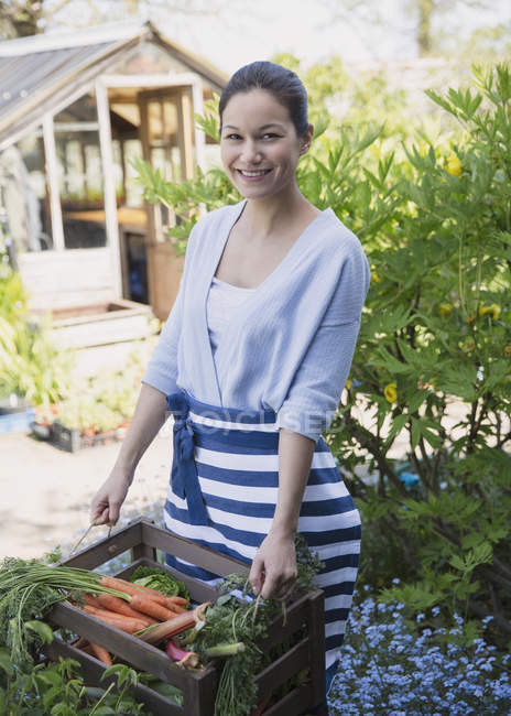 Portrait smiling woman harvesting carrots in garden — Stock Photo