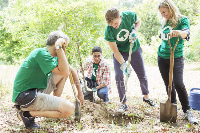 Freiwillige Umweltschützer pflanzen neuen Baum — Stockfoto