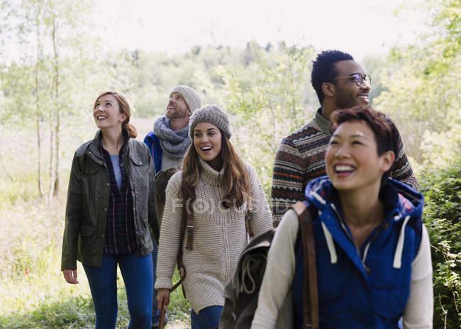 Друзья, гуляющие в лесу днем — стоковое фото