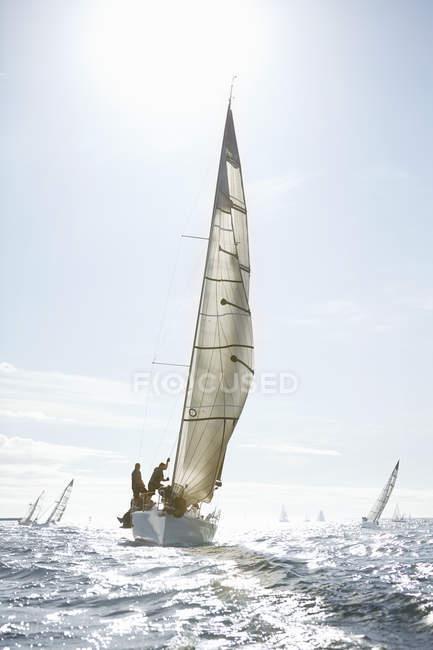 Дальний вид парусников на солнечный океан — стоковое фото