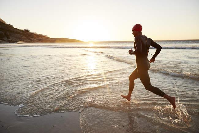 Пловец-триатлонист в мокром костюме на восходе солнца бежит в океан — стоковое фото