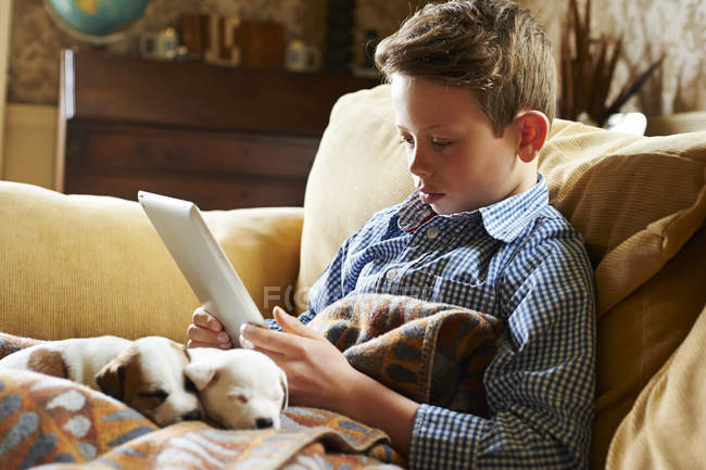 Boy using digital tablet with puppies in lap at home — Stock Photo