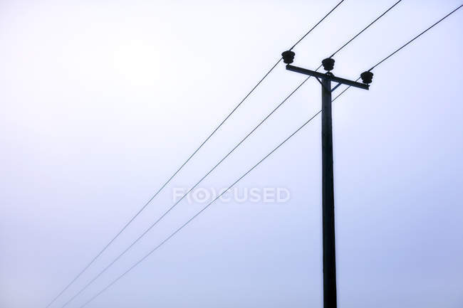 Power lines under overcast sky — Stock Photo