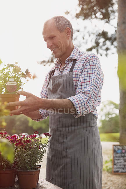 Smiling plant nursery worker holding potted flowers — Stock Photo