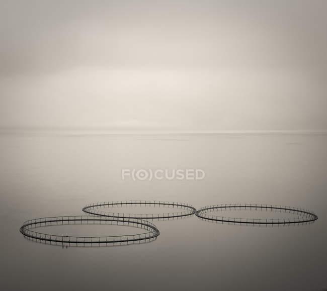 Fishing nets on water surface — Stock Photo