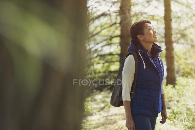 Femme randonnée avec sac à dos regardant dans les bois — Photo de stock