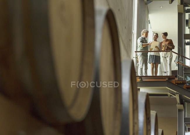 Winery employees talking on platform in cellar — Stock Photo