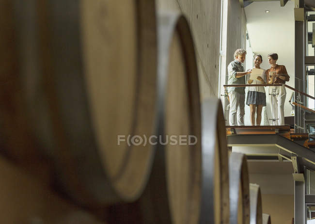 Winery employees talking on platform in cellar — Stock Photo