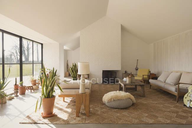 Главная витрина солнечная гостиная — стоковое фото