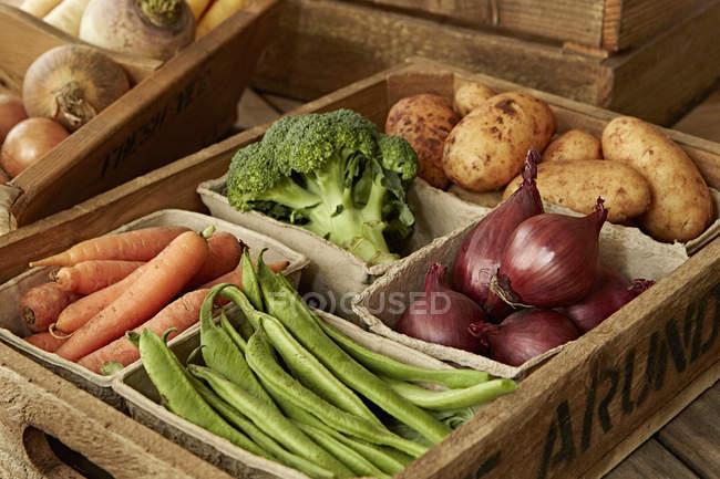 Натюрморт свежие, органические, здоровый урожай овощей разнообразие в деревянный ящик — стоковое фото