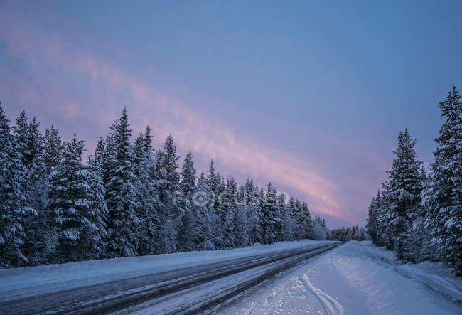 Strada di inverno remoto attraverso neve coperto di alberi della foresta, Lapponia, Finlandia — Foto stock