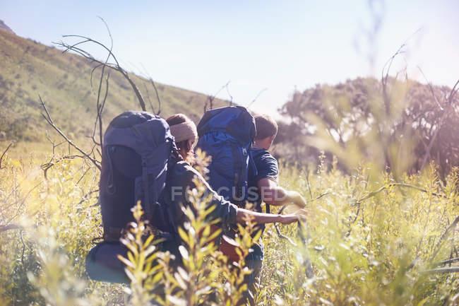 Молоді пара з рюкзаками походи в Сонячний високій траві поля — стокове фото