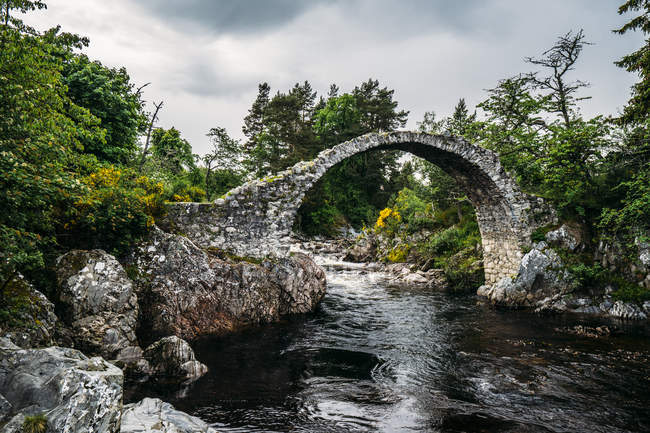 Pasarela arco sobre corriente tranquila, Carrbridge, Escocia - foto de stock
