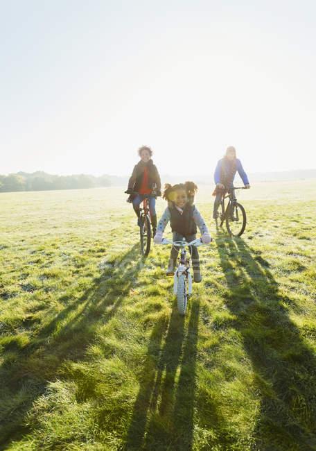 Ritratto giovane famiglia in bicicletta in erba parco soleggiato — Foto stock