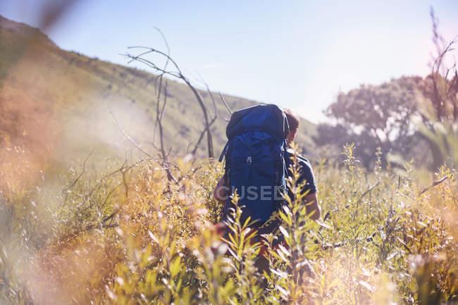 Joven con mochila senderismo en campo soleado - foto de stock