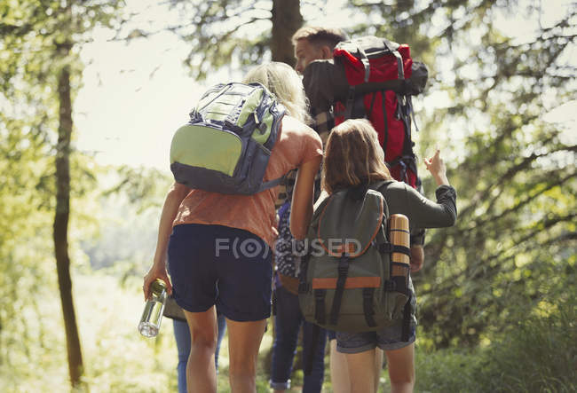 Family with backpacks hiking in sunny woods — Stock Photo