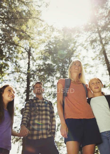 Familienwanderung im sonnigen Wald — Stockfoto