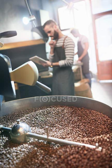 Male coffee roaster using digital tablet behind roasting coffee beans — Stock Photo