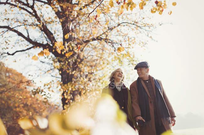 Ласковая пожилая пара, держащаяся за руки, гуляющая в солнечном осеннем парке — стоковое фото