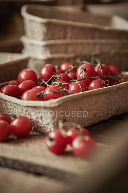 Still life fresh, organic, red, healthy vine cherry tomatoes in container — Stock Photo