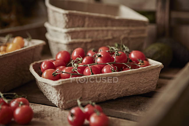 Still life fresh, organic, healthy, red vine cherry tomatoes in container — Stock Photo