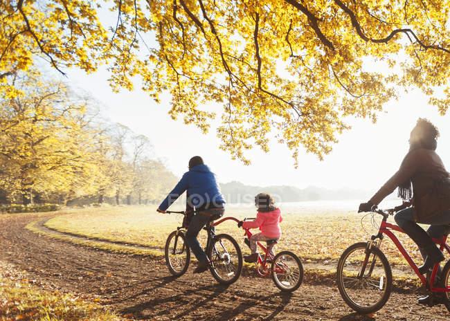 Junge Familie Radfahren auf Weg in sonnigen herbstlichen Wälder — Stockfoto