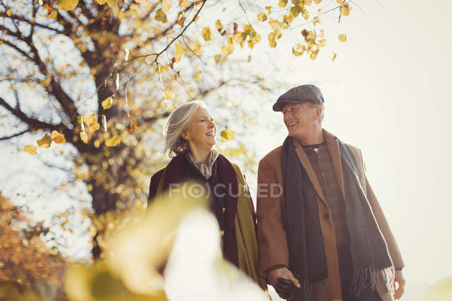 Усміхаючись старший пара, тримаючись за руки і ходити в Сонячний Осінній Парк — стокове фото