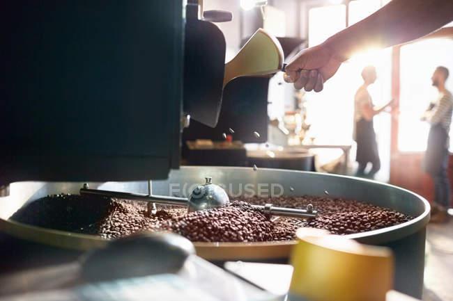 Coffee roaster roasting coffee beans — Stock Photo