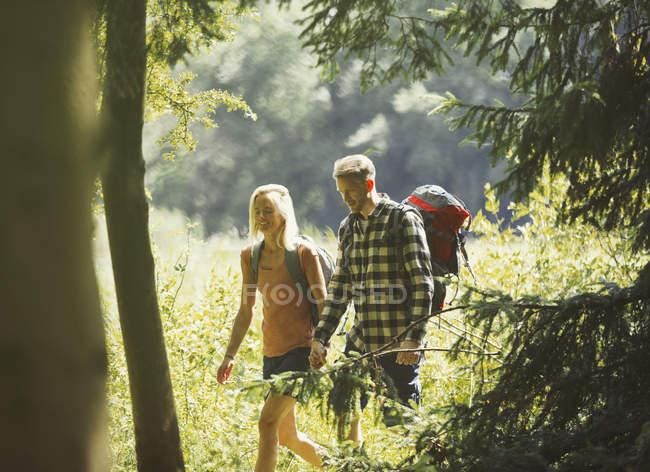 Couple avec sacs à dos randonnée dans les bois ensoleillés — Photo de stock