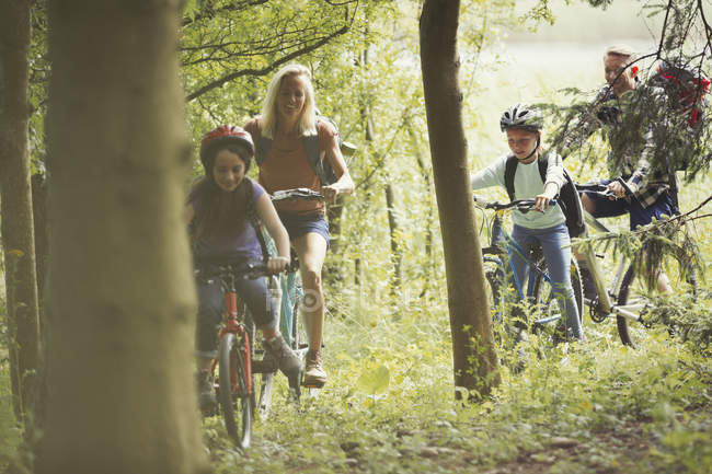 Семейный горный велосипед в лесу — стоковое фото