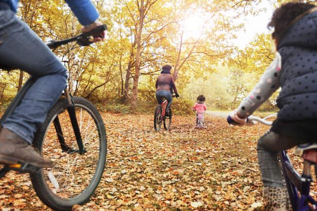Junge Familie Radfahren im herbstlichen Wälder — Stockfoto