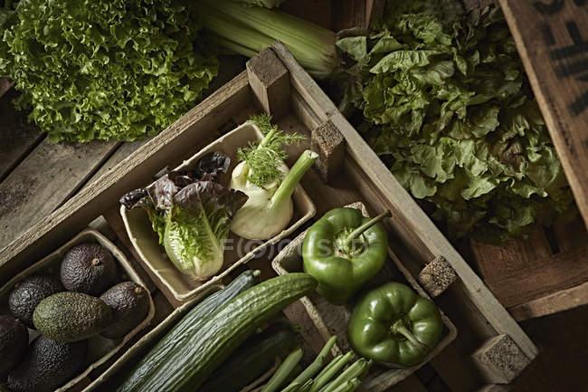Natura morta fresca, biologica, verde, sana varietà vegetale in cassa di legno — Foto stock