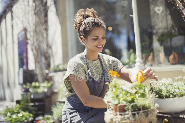 Smiling female florist arranging display at sunny flower shop storefront — Stock Photo