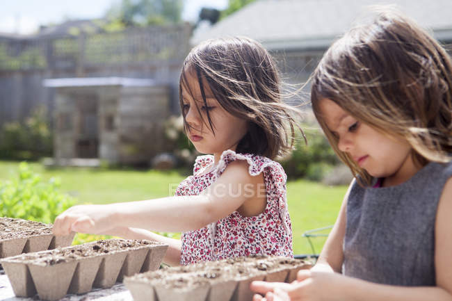 Girl sisters planting seedlings in sunny yard — Stock Photo