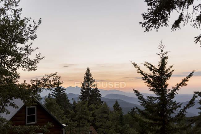 Спокійні силуетними гори поза деревами — стокове фото