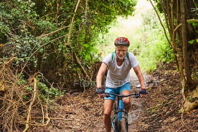 Mature man mountain biking on trail in woods — Stock Photo