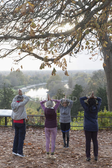 Active seniors practicing yoga in autumn park — Stock Photo