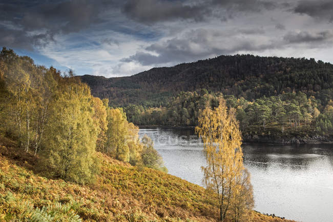 Tranquil glen landscape with autumn trees and river, Glen Affric, Scotland — Stock Photo