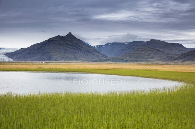 Tranquil, remote mountain landscape with fresh, green grass, Iceland — Stock Photo