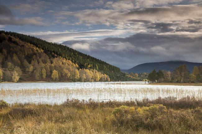 Tranquillo, idilliaco paesaggio con colline di autunno e lago, Loch Pityoulish, Aviemore, Scozia — Foto stock