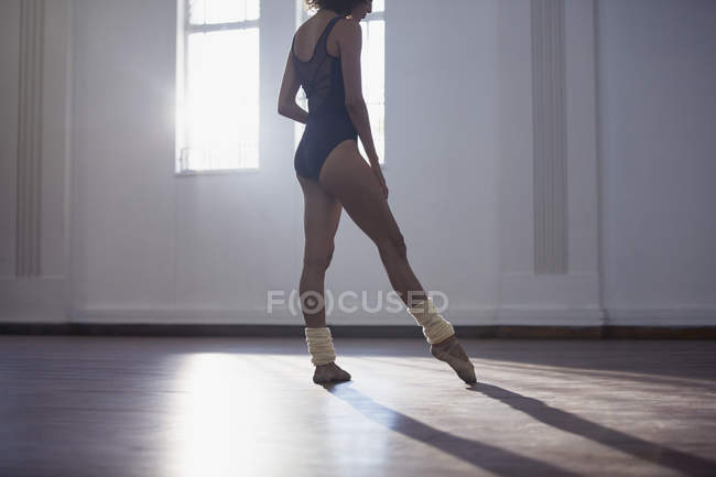 Graceful young female ballet dancer practicing in dance studio — Stock Photo